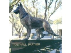 faithful partner